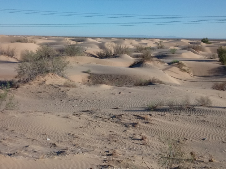 CA Dunes